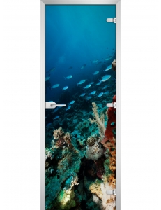 Underwater World-11